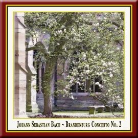 Brandenburg Concerto No. 2 in F Major, BWV 1047: II. Andante