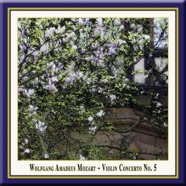 """Violin Concerto No. 5 in A Major, K. 219 """"Turkish"""": II. Adagio"""