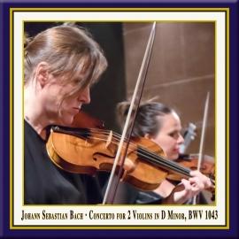 Concerto for 2 Violins in D Minor, BWV 1043: II. Largo ma non tanto